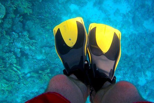 zdjęcia podwodne